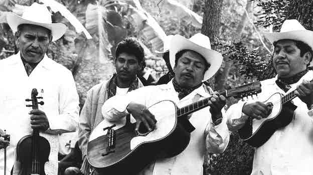 "Los Camperos de Valles, masters of the musical style ""son huasteco"" of Ciudad Valles in Mexico."