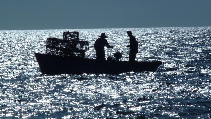 Fishermen off Havana