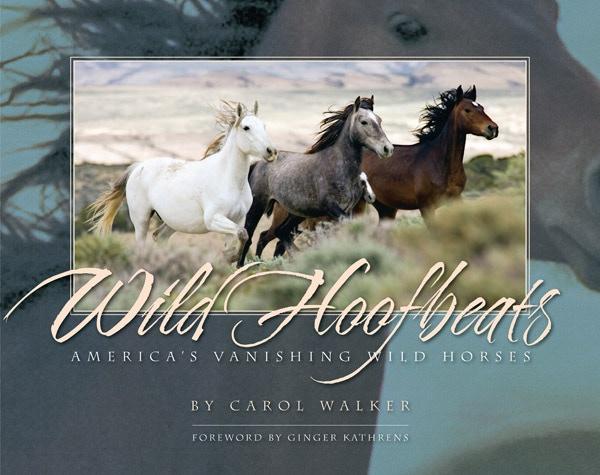 Wild Hoofbeats: America's Vanishing Wild Horses by Carol J. Walker