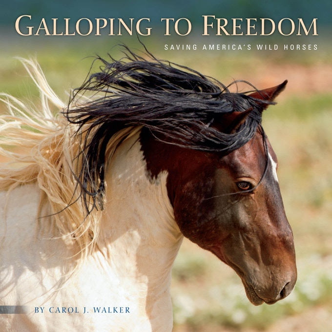 Galloping to Freedom: Saving America's Wild Horses
