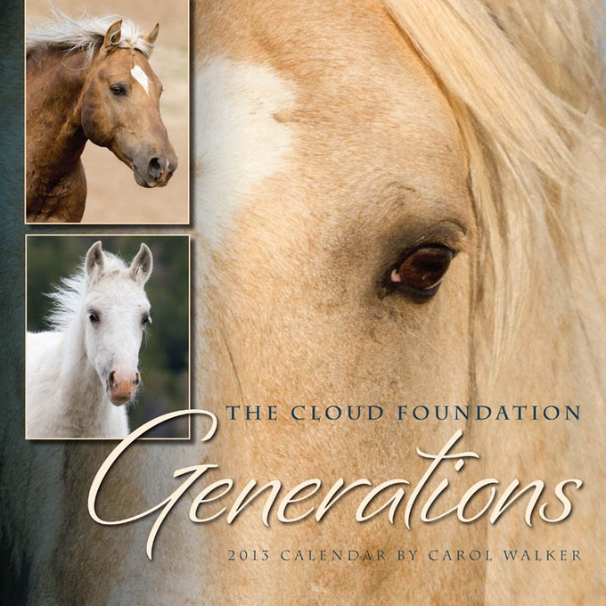 The Cloud Foundation 2013 Wild Horse Calendar