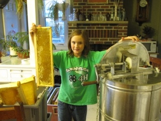 An uncapped frame of honey comb about to go into the extractor.