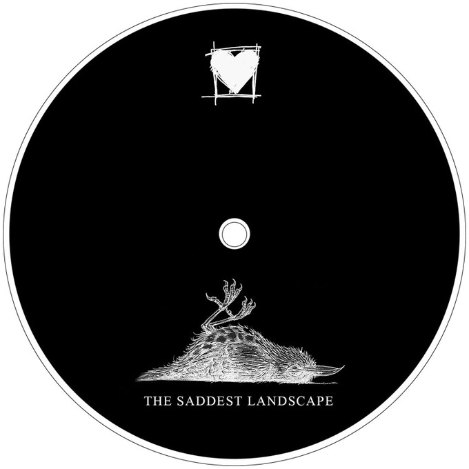 The Saddest Landscape Deluxe Vinyl Reissues By The