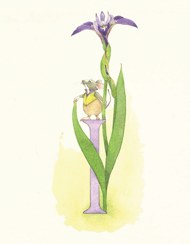 I is for iris, and for inimitable Ira, who works at a florist shop. (I have been drawing mouse characters since I was a kid and they are often featured in my cards and in my little prints.)