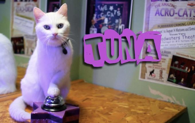 """Tuna """"The Star"""""""