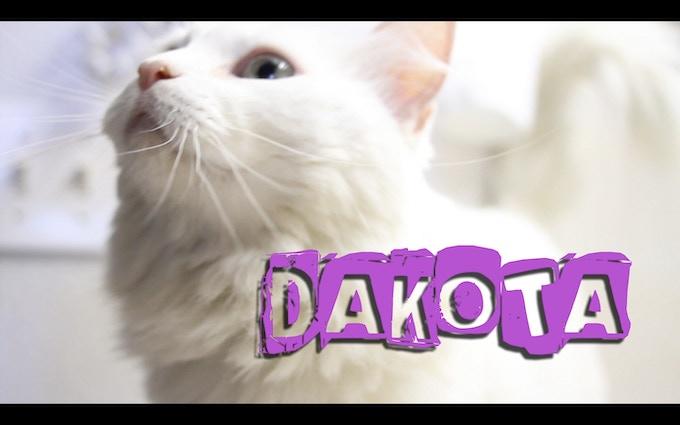 """Dakota """"The Diva"""""""
