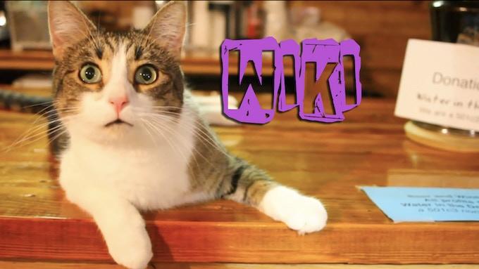 """Wiki """"The Daredevil"""""""