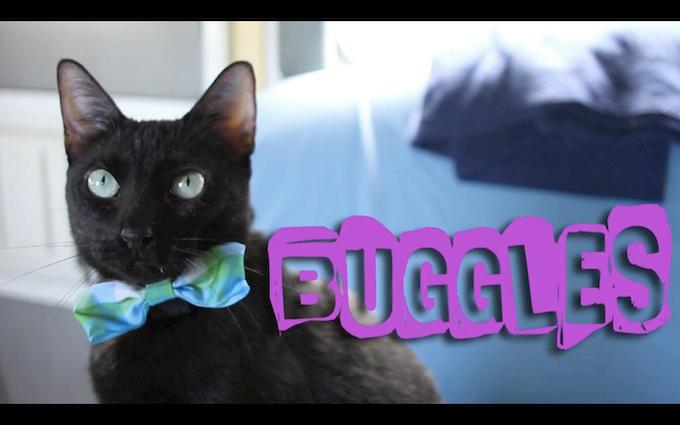 "Buggles ""The Nerd"""
