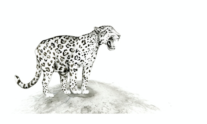 JAGUAR, Original pen & ink - Example of $1000 Pledge