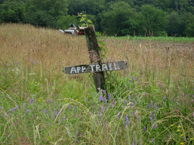 One of the many sign posts and varied habitats along the trail