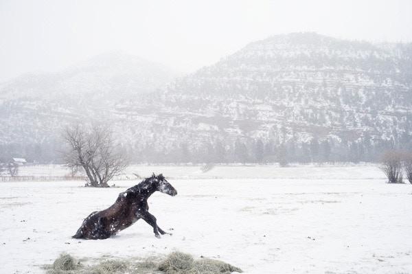 Durango, Colorado, 2012.. From America project