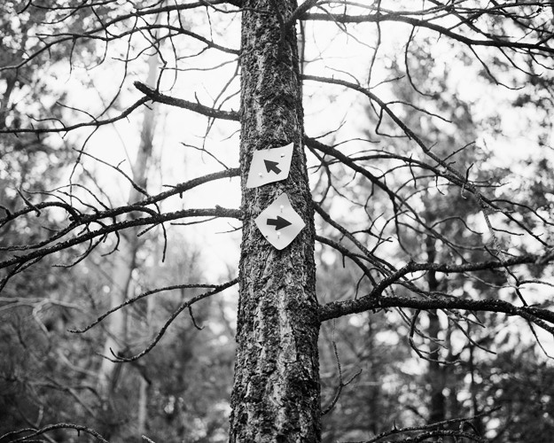 """""""Double Arrow"""" cover photograph: available as a limited edition archival print as one of the rewards."""