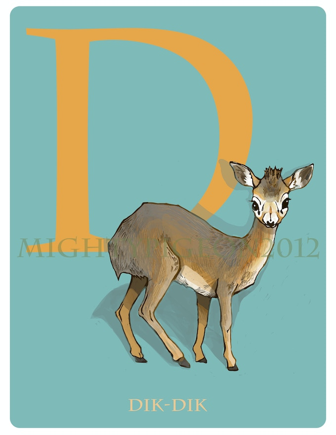 D is for Dik-Dik