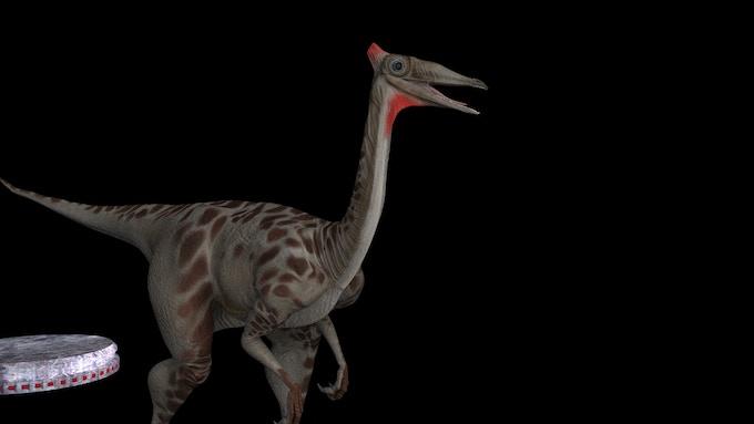 Pelecanimimus (3D CGI created for Dinosaur Island by José Antonio Peñas)