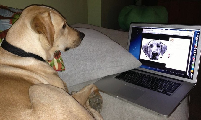 Lily sees a familiar face on the Dog Scratch Blog...