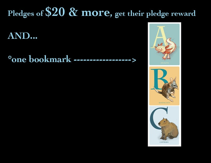 Pledges of $20+ (NOT including shipping costs), get a free BOOKMARK!