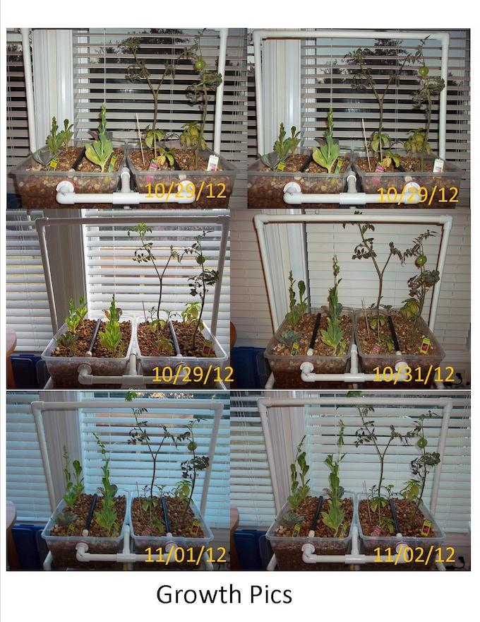Apartment Indoor Aquaponics System By Renewable Diy