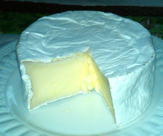 A young Brie - creamy and buttery