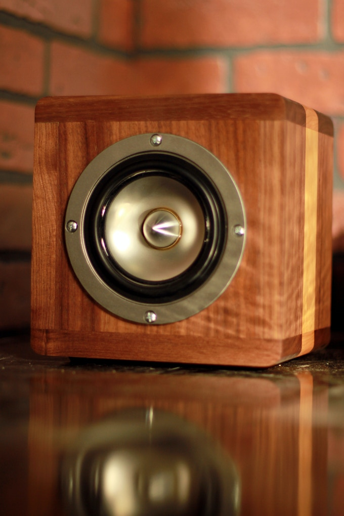 The speakers are just as beautiful as the amplifier
