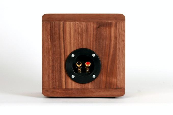 BlueTube Speaker Back (gold-plated, spring-loaded speaker wire terminals)