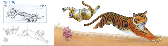Tigers: from rough sketch to final illustration