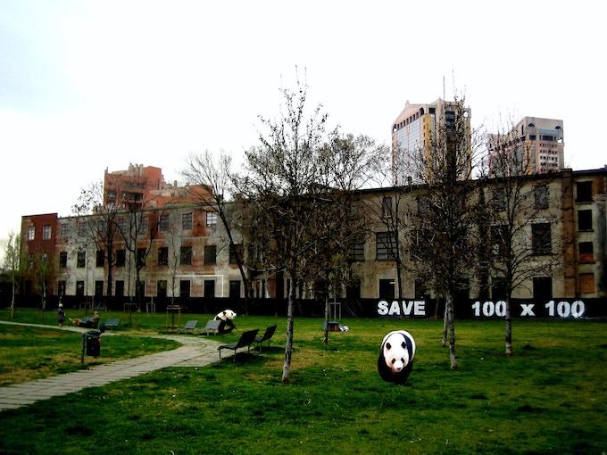 "Luca Pozzi, ""Save 100x100"", postcard"