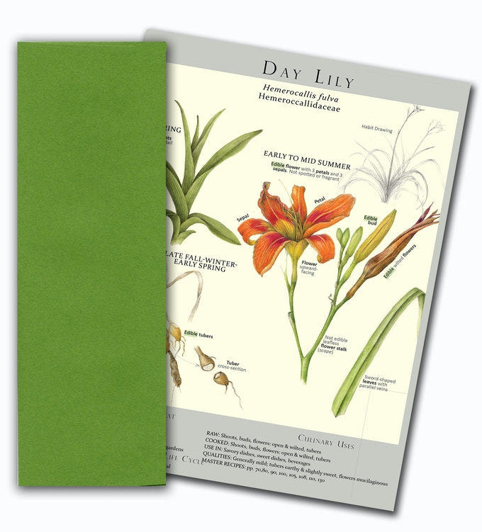 Sample of a Notecard/colored envelope