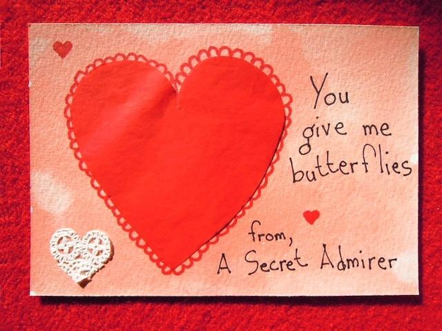 Secret Admirer By Joanne Arnett Kickstarter