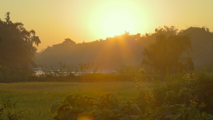 Sunset on Majuli Island