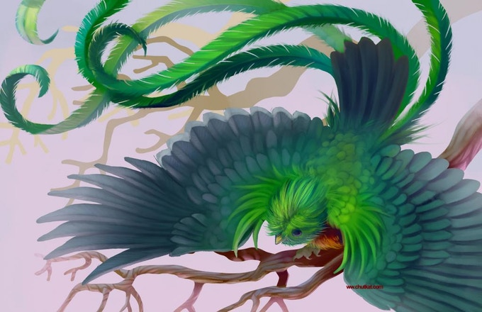 Work in progress- Resplendant Quetzal by Maricela Ugarte