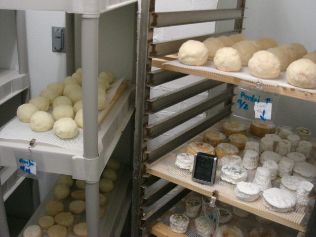 OakMoon Cheese: Complex~Robust~Decadent by OakMoon Farm & Creamery