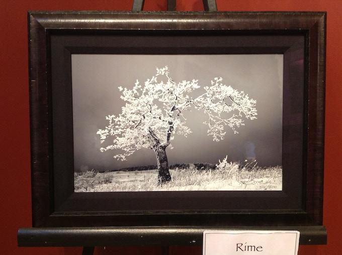10 x 15 image shown framed