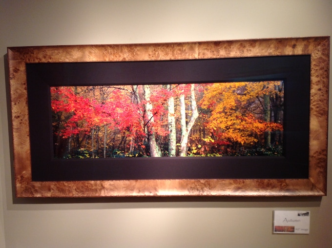 "40"" panoramic image, shown framed. (23 x 53 framed size)"