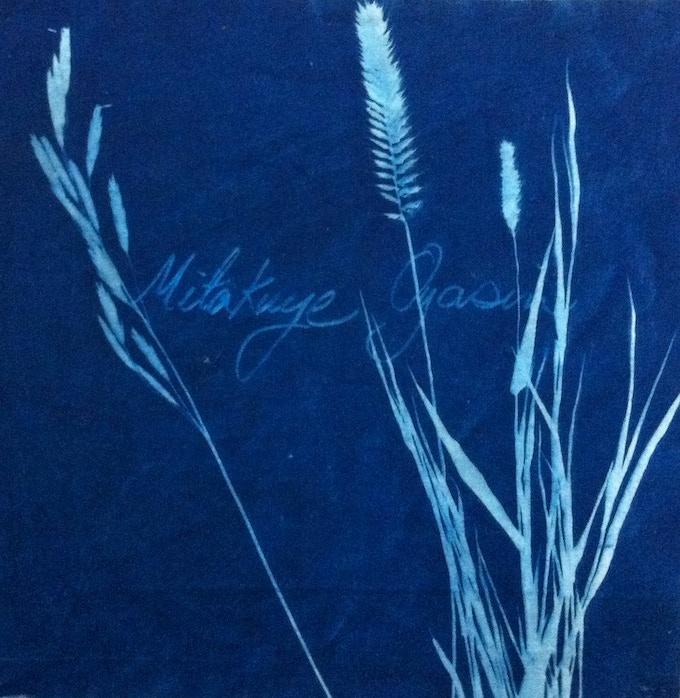 Original Cyanotype Print [Sample] ($100 and $150 pledges)