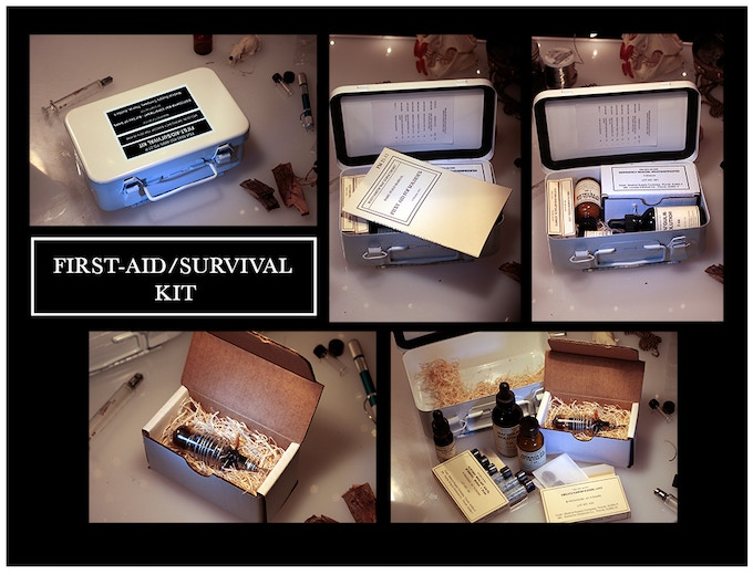 BEZRODNYM FIRST AID/SURVIVAL KIT from decommissioned Bezrodnym hardened carrier-frigate. Contains emergency bio-etheric beacon, emergency food and medicines, and first aid guide. (click for more detail)