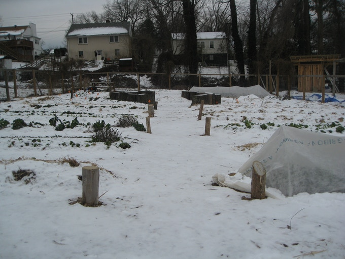 The garden's winter sleep.