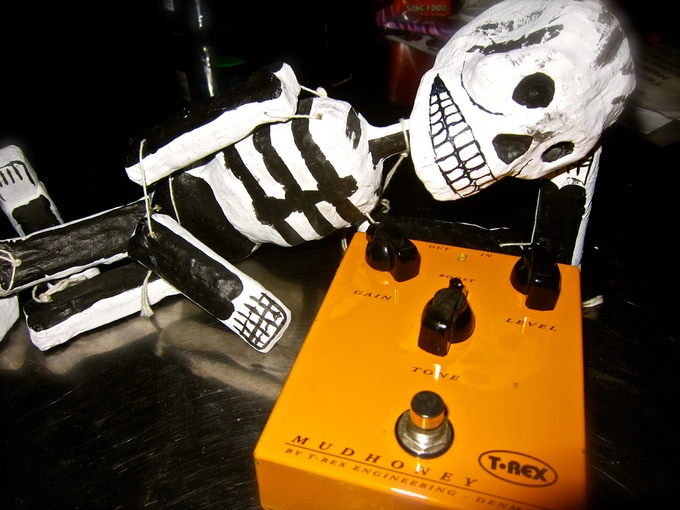 T-Rex Mudhoney Pedal I used on the Warped Tour & early KP tours