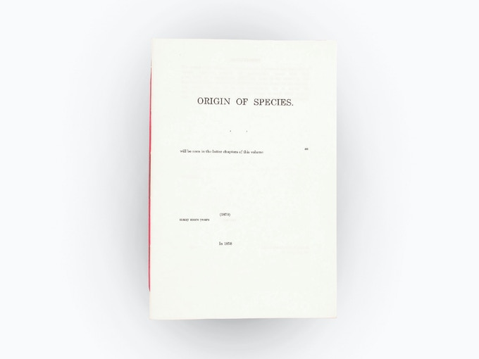 Front cover of the original 32 page hand-bound artists book