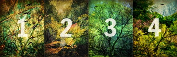 The Never-Ending Wood Design Cycle: Numbered Images