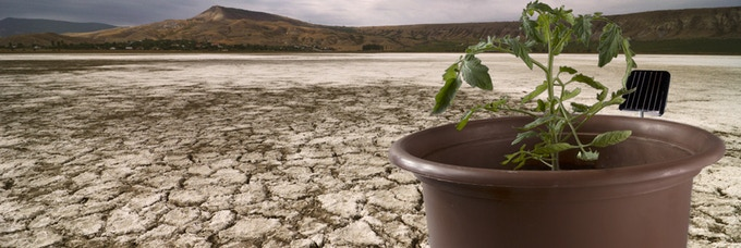 The Hydropot™ can grow anything...Anywhere! Even in the most hostile of environments.