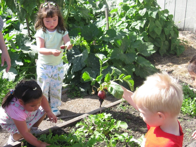Children discover the fun of real food.