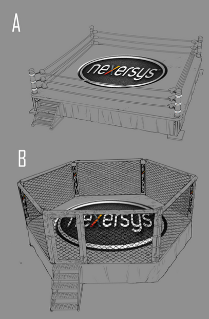 Environment Sketches: Boxing Ring & MMA Cage