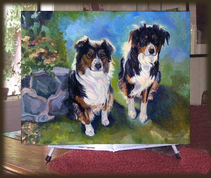 Here are Harley and Jesse, our two Australian shepherds.