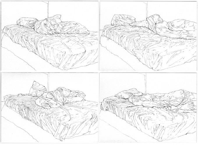 Examples of Pablo's camera lucida drawings, 2010.
