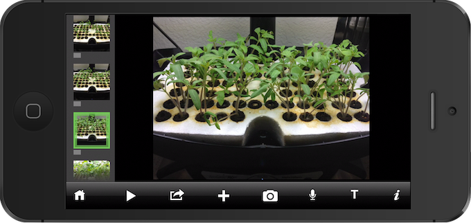 A Science Project Explory: Wonder what they're growing in that class?