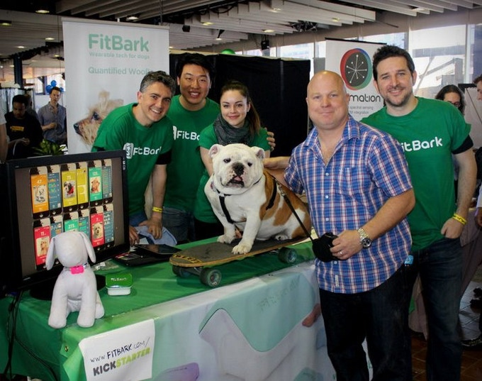 Team FitBark at work with Beefy and Patrick...work, really?
