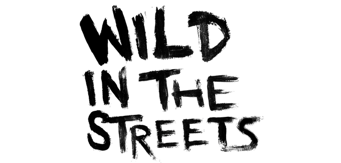 Wild In The Streets: NYC Street Art Documentary Series by