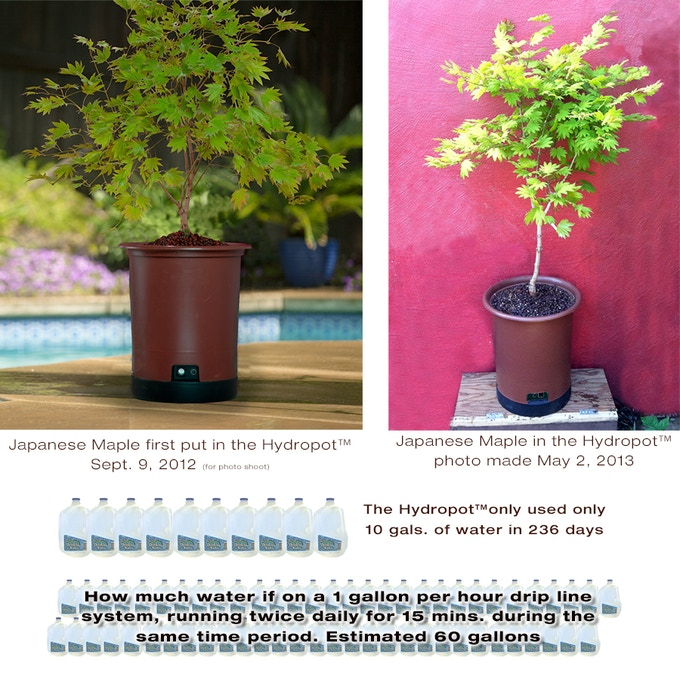 Hydropot™ uses much less water. Here's an example how the Hydropot™ used 60% less water than conventional low-water drip line systems.