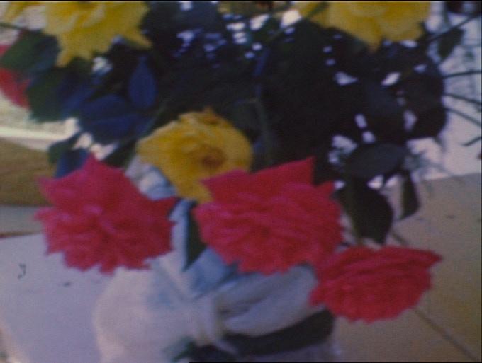 $150 award: 11x14 Vintage Flowers Archival Pigment Print (possible design)