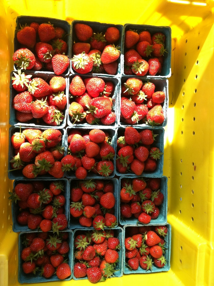 Some strawberries we use from 5 Seeds Urban Farm!